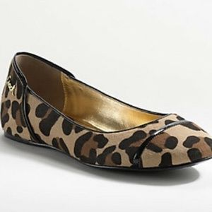 COACH Leopard Cheetah Pony Hair Flat